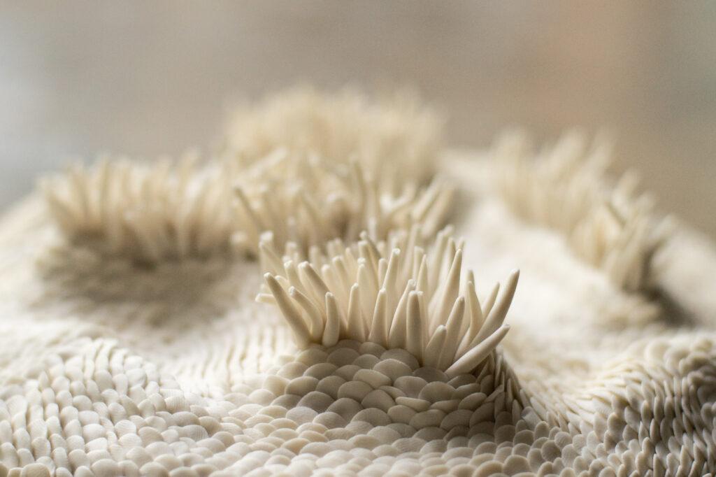 oceanfloor ceramics porcelain modeling details Anne-Sophie Guerinaud Carouge