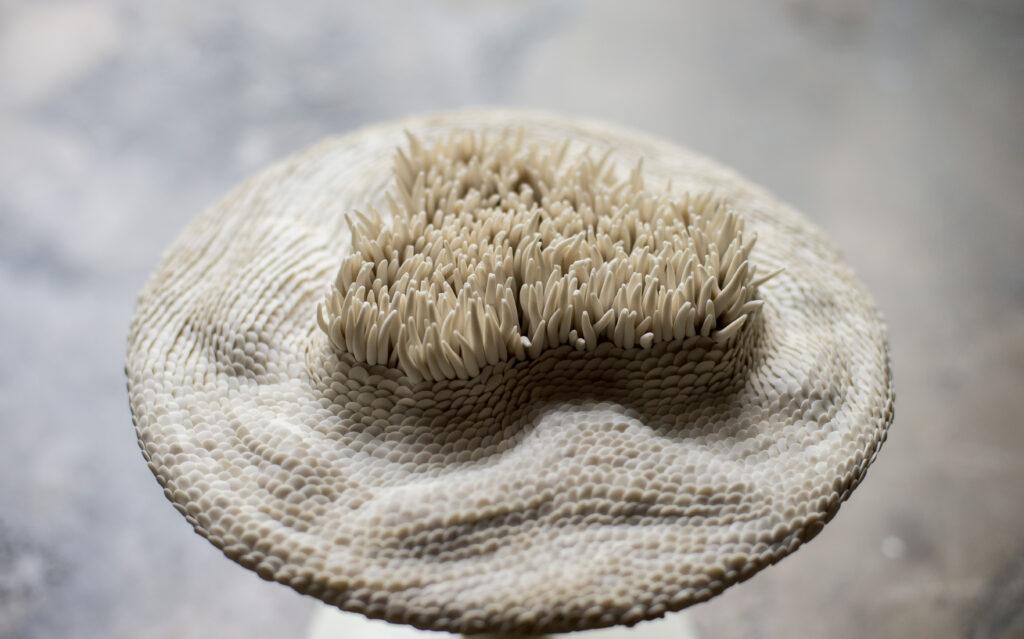 porcelain modeling fishscales Carouge Anne-Sophie Guerinaud Bruckner Foundation residency program